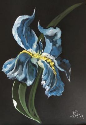Blue-roi, Anne d'Orléans 147
